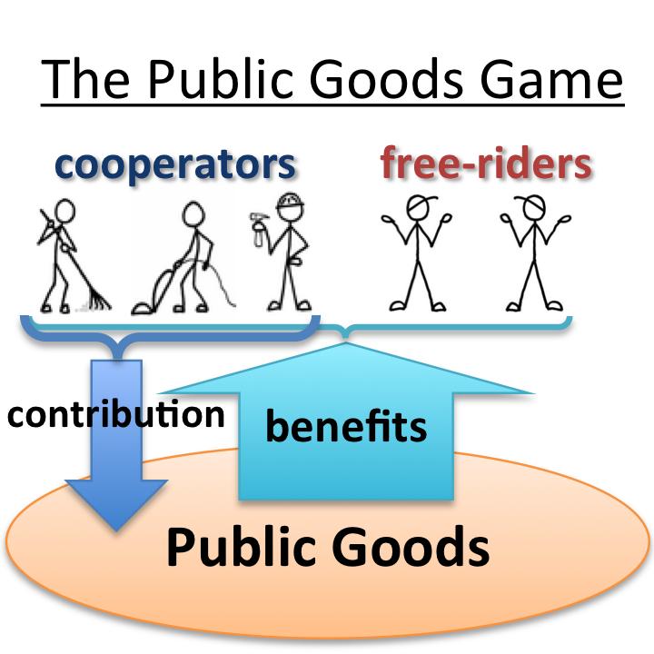Public goods - short answer